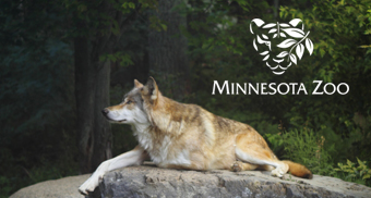 Minnesota Zoo Minneapolis Car Service